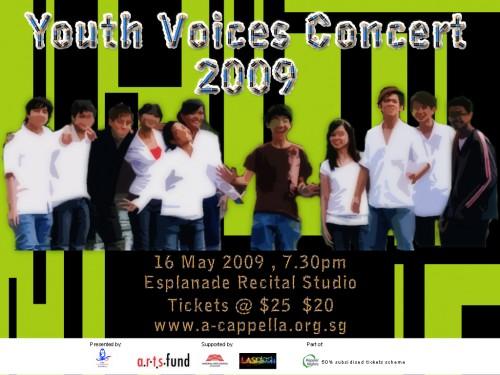 yv2009-d3
